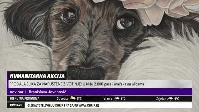 PREDIVAN GEST NIŠLIJA: Organizovanli HUMANITARNU AKCIJU – prodaju slike za NAPUŠTENE životinje (KURIR TELEVIZIJA)