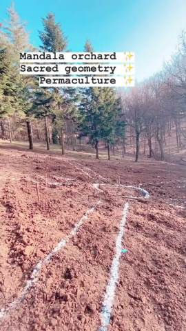 NAKON RAZVODA, SPREMA NEŠTO VELIKO! Elena Karić šeta po oranici na Kosmaju, nasred zemljišta nacrtan veliki krug, POKAZALA SVE!