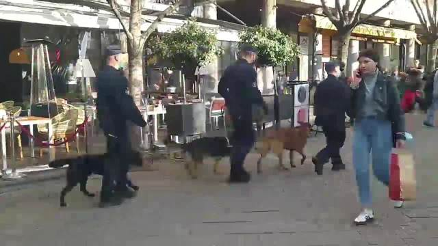 Dovedeni službeni psi za pretraživanje objekta (KURIR TV) 2