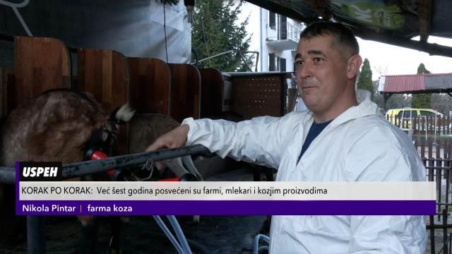 Nikola i Tatjana se zbog stočarstva preselili iz grada u selo