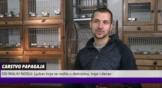 LJUBAV PRETVORIO U BIZNIS: Stefan bio OPSEDNUT pticama, porodica ga nije podržala, a sad svi rade za njega KURIR TELEVIZIJA