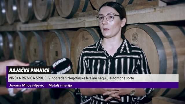 VINSKA RIZNICA SRBIJE: Vinogradari Negotinske Krajine neguju autohtone sorte