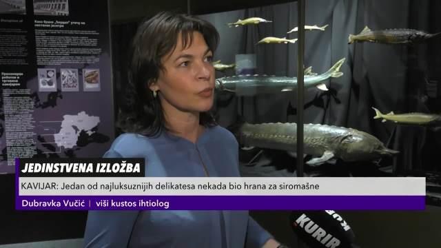 NEKADA HRANA ZA SIROMAŠNE A DANAS ZA BOGATE: Zbog čega se kavijar, jedan od najluksuznijih delikatesa više ne proizvodi u Srbiji?